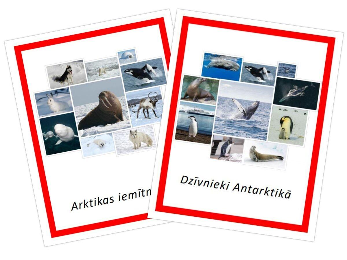 Komplekts - Arktikas iemītnieki + Dzīvnieki Antarktikā