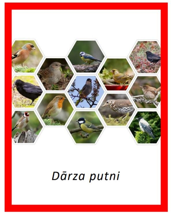 Dārza putni