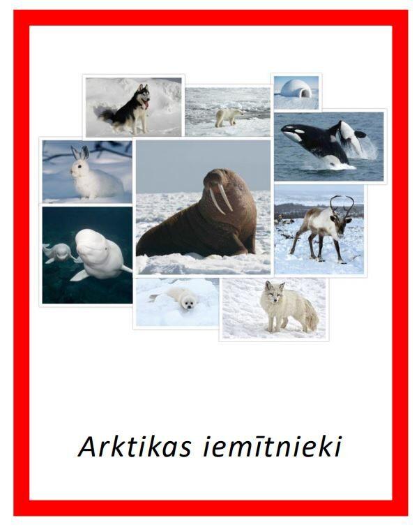 Komplekts - Arktikas iemītnieki