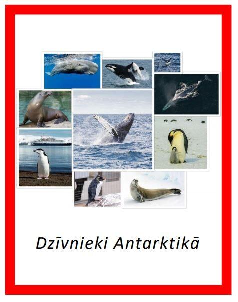 Komplekts - Arktikas iemītnieki + Dzīvnieki Antarktikā + Pingvīni