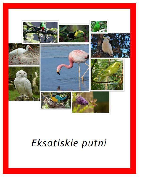 Eksotiskie putni