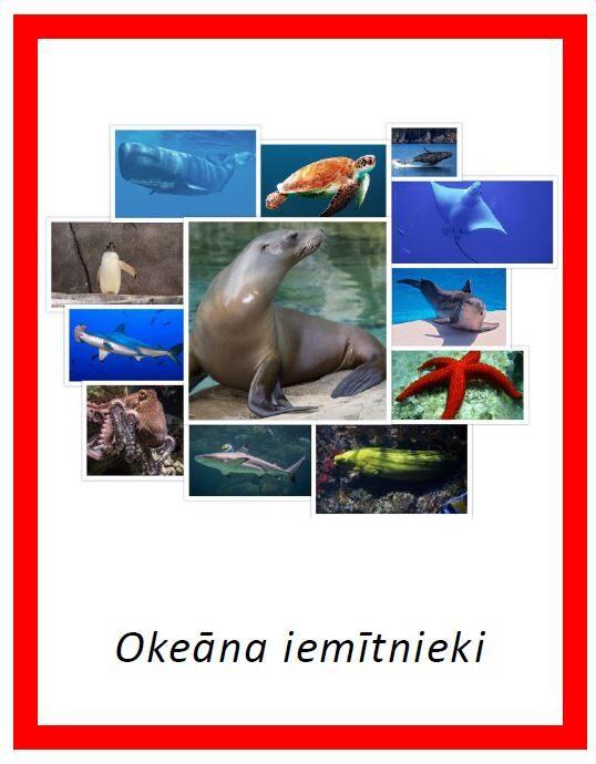 Okeāna iemītnieki