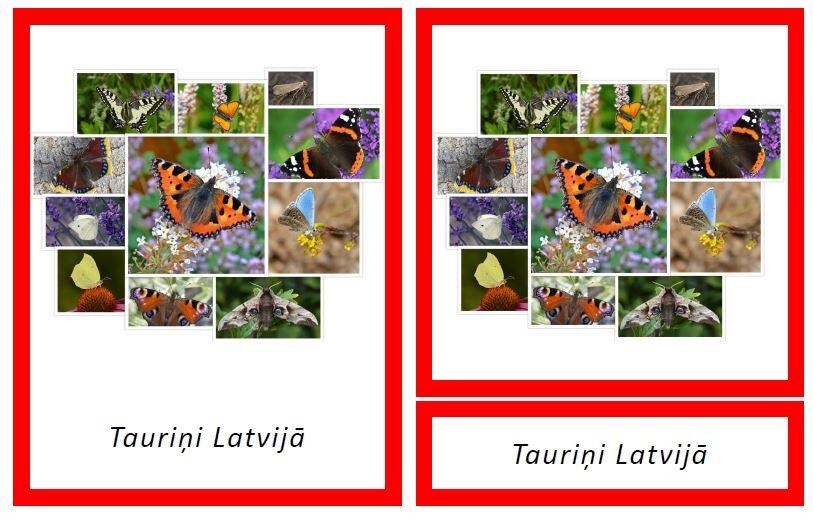 Komplekts - Tauriņi Latvijā