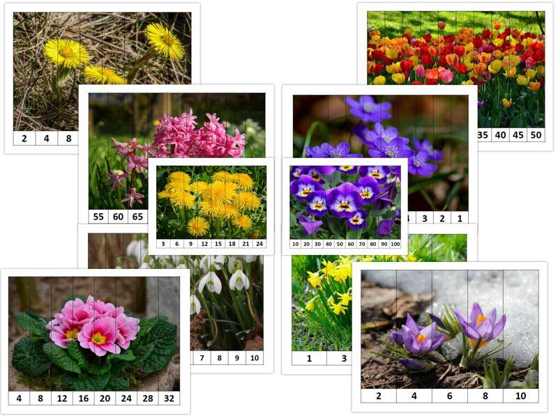 Puzle - Pavasara ziedi - skaitļu kombinācijas