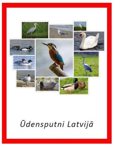Ūdensputni Latvijā