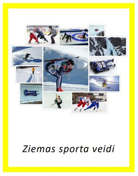 Ziemas sporta veidi