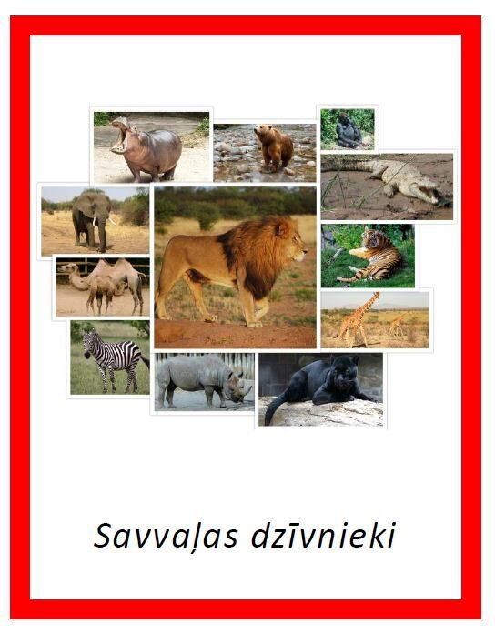 Savvaļas dzīvnieki